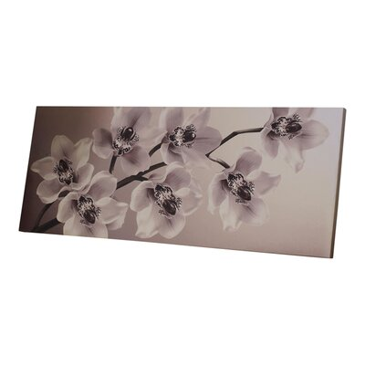 Graham & Brown Orchid Branch Photographic Print on Canvas
