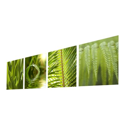 Graham & Brown Leaf Quad 4 Piece Photographic Print Set