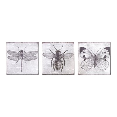 Graham & Brown Vintage Bugs 3 Piece Graphic Art on Canvas Set