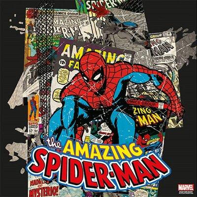 Graham & Brown Marvel Amazing Spider-Man Vintage Advertisement on Canvas