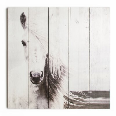 Graham & Brown Wooden Visions Horse Photographic Print Plaque
