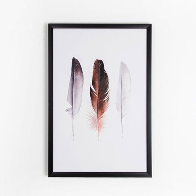 Graham & Brown Natural World Feather Trio Graphic Art on Canvas