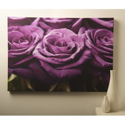Graham & Brown Roses Row Photographic Print on Canvas