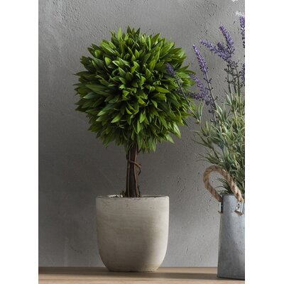 Gallery Faux Ball Topiary in Pot