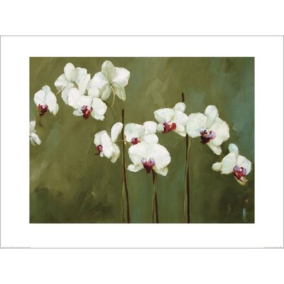 Art Group Orchid in Greens by Nicola Acaster Art Print