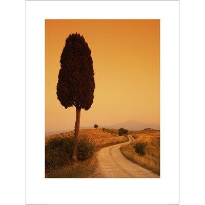 Art Group Bella Toscana by Tom Mackie Art Print