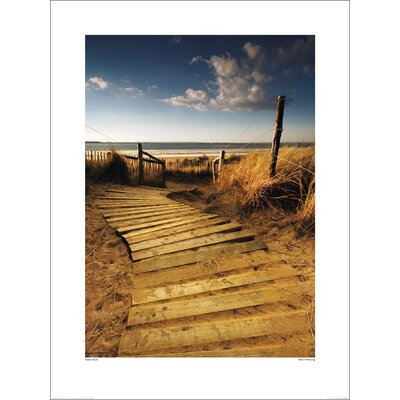 Art Group West Wittering by Helen Dixon Photographic Print