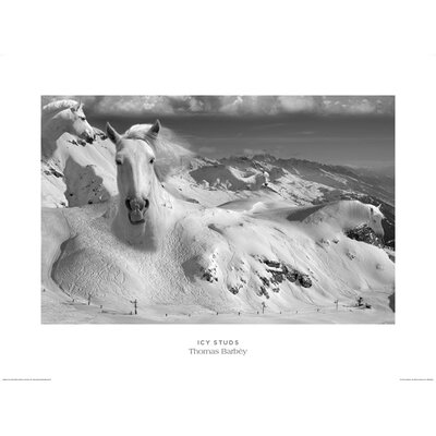 Art Group Icy Studs by Thomas Barbey Graphic Art