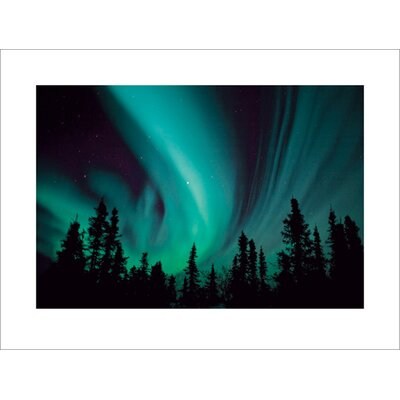 Art Group Northern Lights Photographic Print