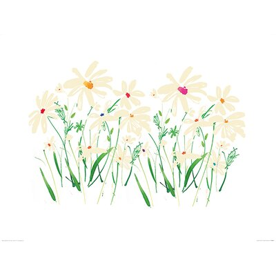 Art Group Marguerite Daisy by Summer Thornton Art Print