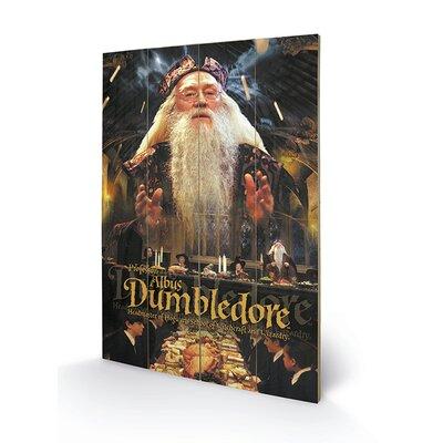 Art Group Harry Potter, Dumbledore Vintage Advertisement Plaque