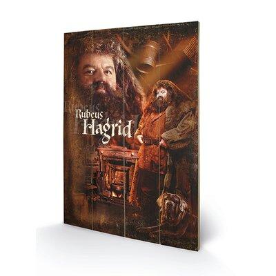 Art Group Harry Potter, Hagrid Vintage Advertisement Plaque