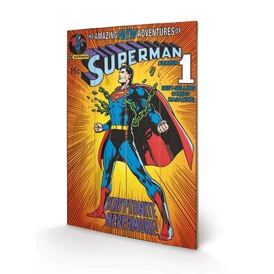 Art Group DC Comics Superman - Kyrptonite Vintage Advertisement Plaque