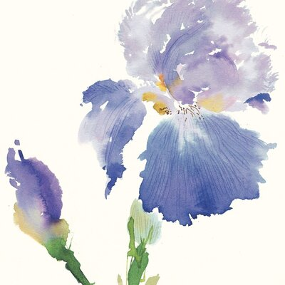 Art Group Iris by Summer Thornton Canvas Wall Art