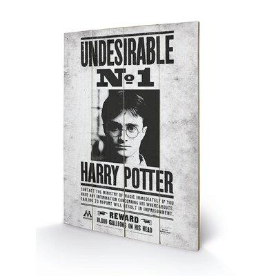 Art Group Harry Potter, Undesirable No1 Vintage Advertisement Plaque