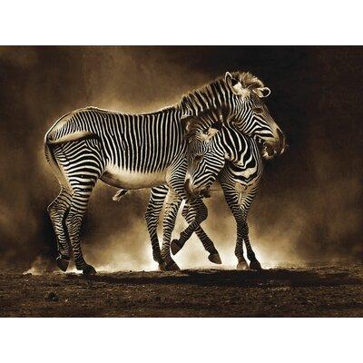 Art Group Zebra Grevys by Marina Cano Canvas Wall Art