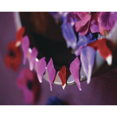 Art Group Alizarin Crimson III by Sandra Lane Photographic Print on Canvas