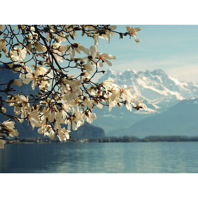 Art Group Blossoming Magnolia, Lake Geneva, Switzerland by Guenter Fischer Canvas Wall Art