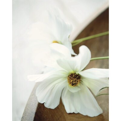 Art Group Still Life II by Ian Winstanley Photographic Print on Canvas