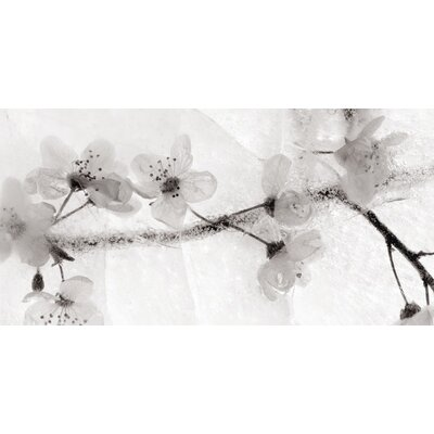 Art Group Ice Form 22 by Ryuijie Douglas Canvas Wall Art