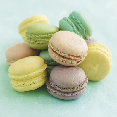 Art Group Macaroons by Howard Shooter Canvas Wall Art