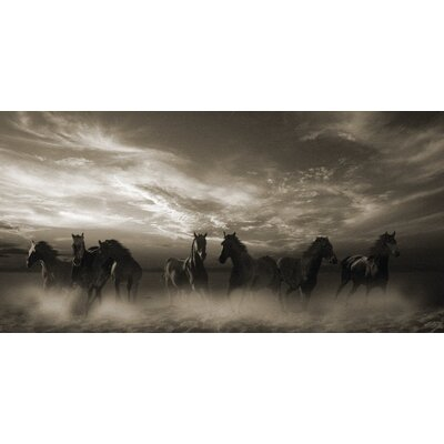 Art Group Wild Stampede by Malcolm Sanders Photographic Print on Canvas
