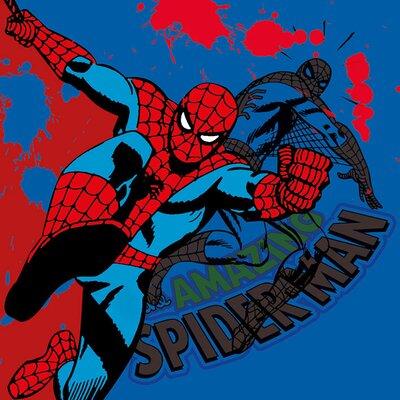 Art Group Spider-Man Canvas Wall Art