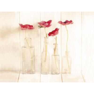 Art Group Anemonies in a Bottle by Ian Winstanley Canvas Wall Art