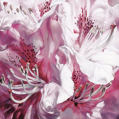 Art Group Froth and Flounce by Sarah Caswell Canvas Wall Art