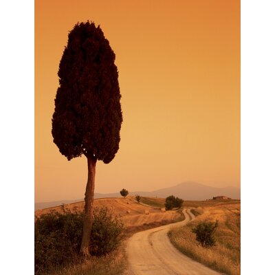 Art Group Bella Toscana by Tom Mackie Canvas Wall Art