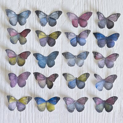 Art Group Butterfly Grid by Howard Shooter Photographic Print on Canvas