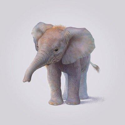 Art Group Elephant by John Butler Art Print on Canvas