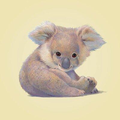 Art Group Koala by John Butler Canvas Wall Art