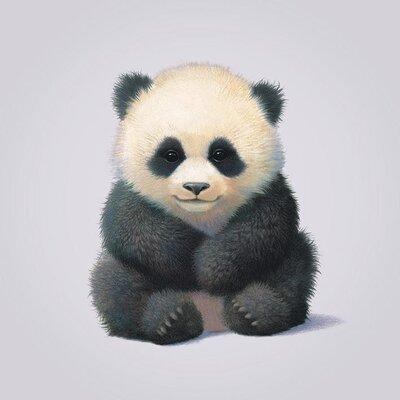 Art Group Panda by John Butler Canvas Wall Art