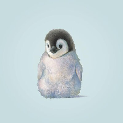 Art Group Penguin by John Butler Canvas Wall Art
