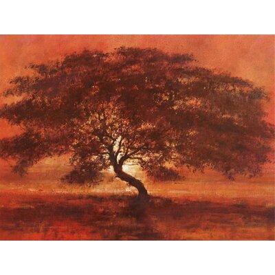 Art Group Desert Tree by Jonathan Sanders Art Print on Canvas