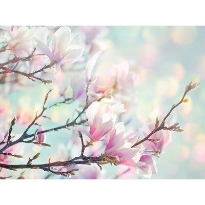 Art Group Magnolia Bokeh by Ros Berryman Canvas Wall Art