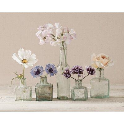 Art Group Flower Collection II by Ian Winstanley Canvas Wall Art