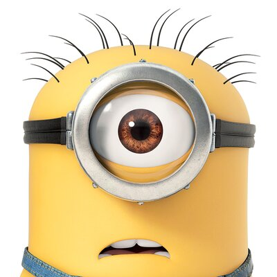 Art Group Despicable Me Carl Close Up Canvas Wall Art