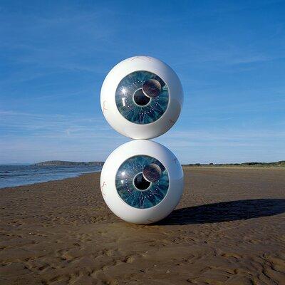 Art Group Pink Floyd Pulse Eyeballs Canvas Wall Art