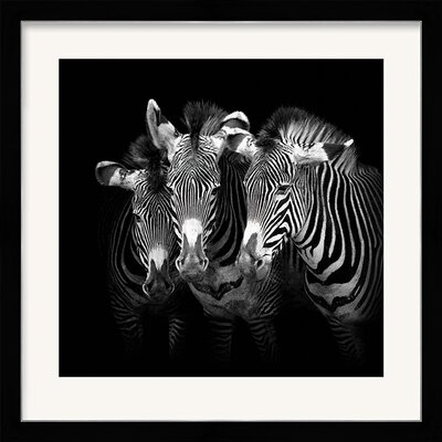 Art Group Shades Of Grevy by Marina Cano Framed Photographic Print