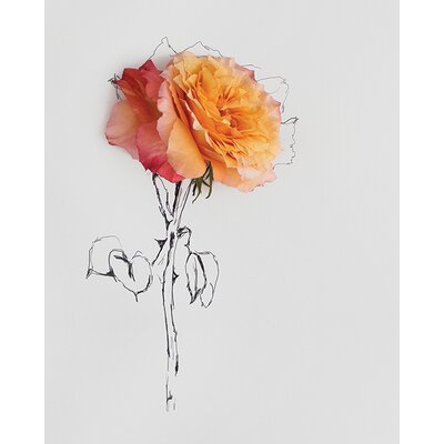 Art Group Rose Botanical No. 0021 by Anna Newell Canvas Wall Art
