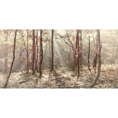 Art Group Autumn Leaves by Ian Winstanley Canvas Wall Art