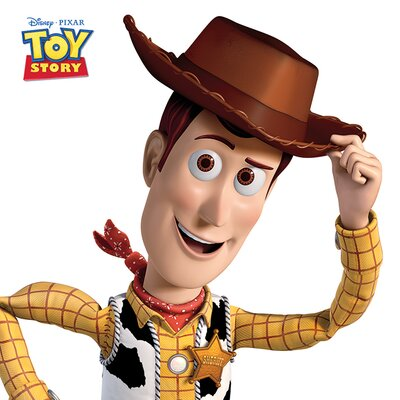 Art Group Toy Story Woody Canvas Wall Art