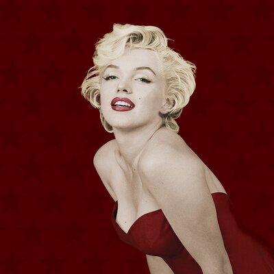 Art Group Marilyn Monroe Star Canvas Wall Art