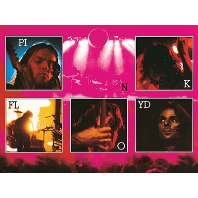 Art Group Pink Floyd - Live Canvas Wall Art