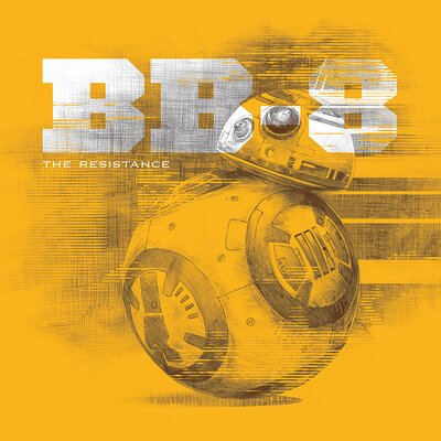 Art Group Star Wars Episode VII - BB-8 Canvas Wall Art