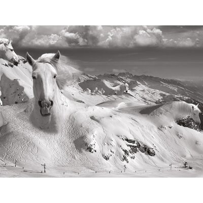 Art Group Icy Studs - Thomas Barbey Canvas Wall Art