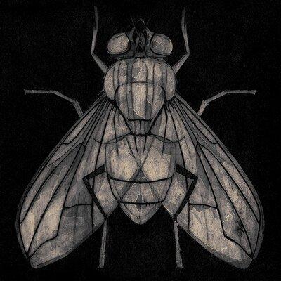 Art Group Barry Goodman - Fly Canvas Wall Art