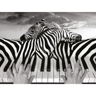 Art Group Piano Peace - Thomas Barbey Canvas Wall Art